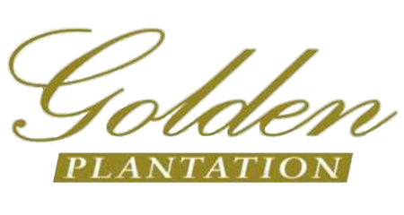 Client Website Golden Plantation